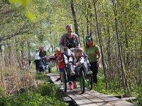 Vammaisjärjestöt haastavat kaikki liikkeelle luontoon 6.6.2020 .